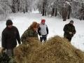 dokarmianie-2013-styczen-24